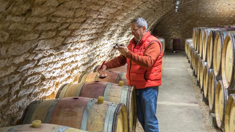 Burgundy 2015