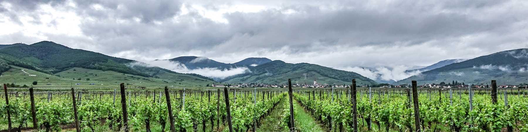 Alsace & Jura