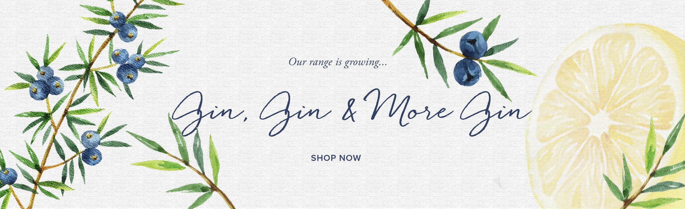 Gin discount
