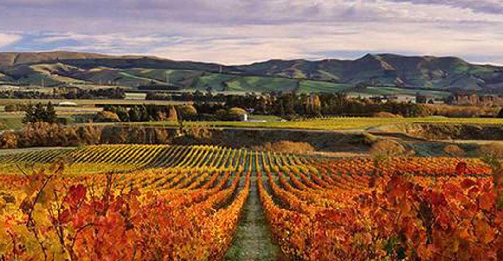New Zealand En Primeur
