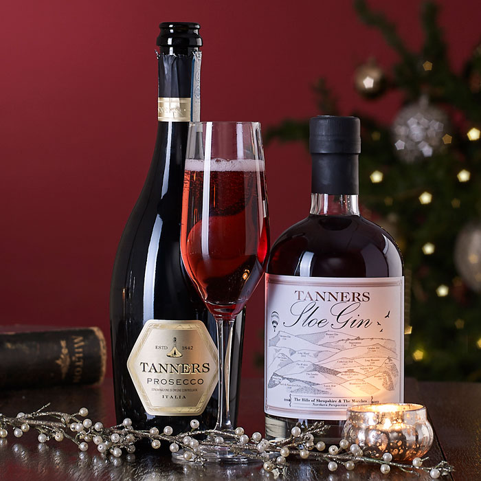 Sparkling Sloe Duo Christmas Gift