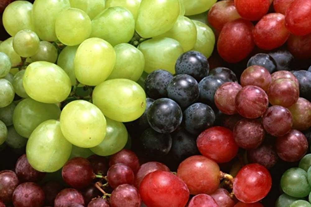 Grape Guide