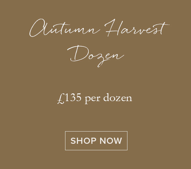 Autumn Harvest Dozen