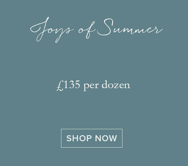 JOYS OF SUMMER - DOZEN