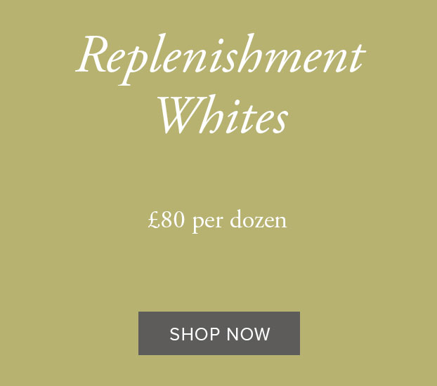 REPLENISHMENT WHITES - DOZEN
