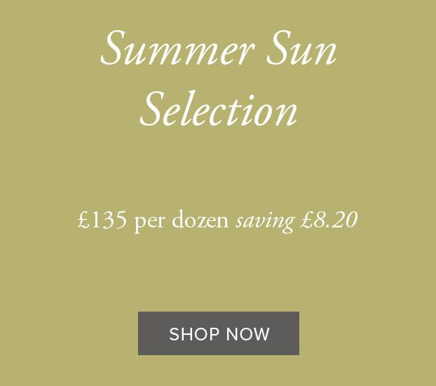 Summer Sun Selection