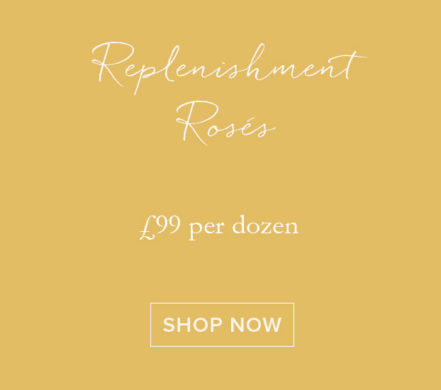 Replenishment Roses
